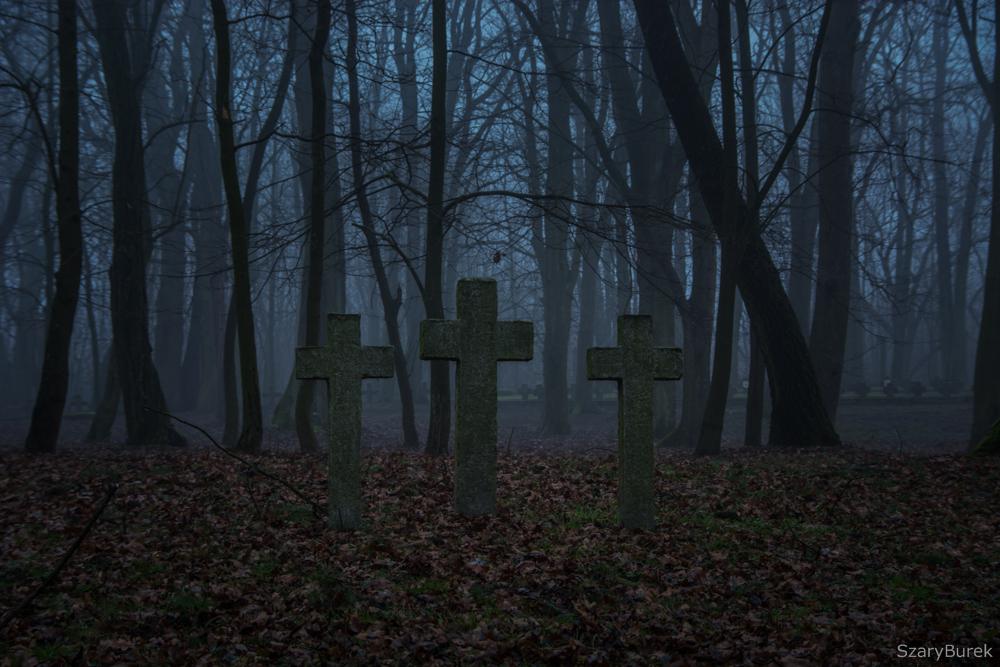 Na cmentarzu wojennym