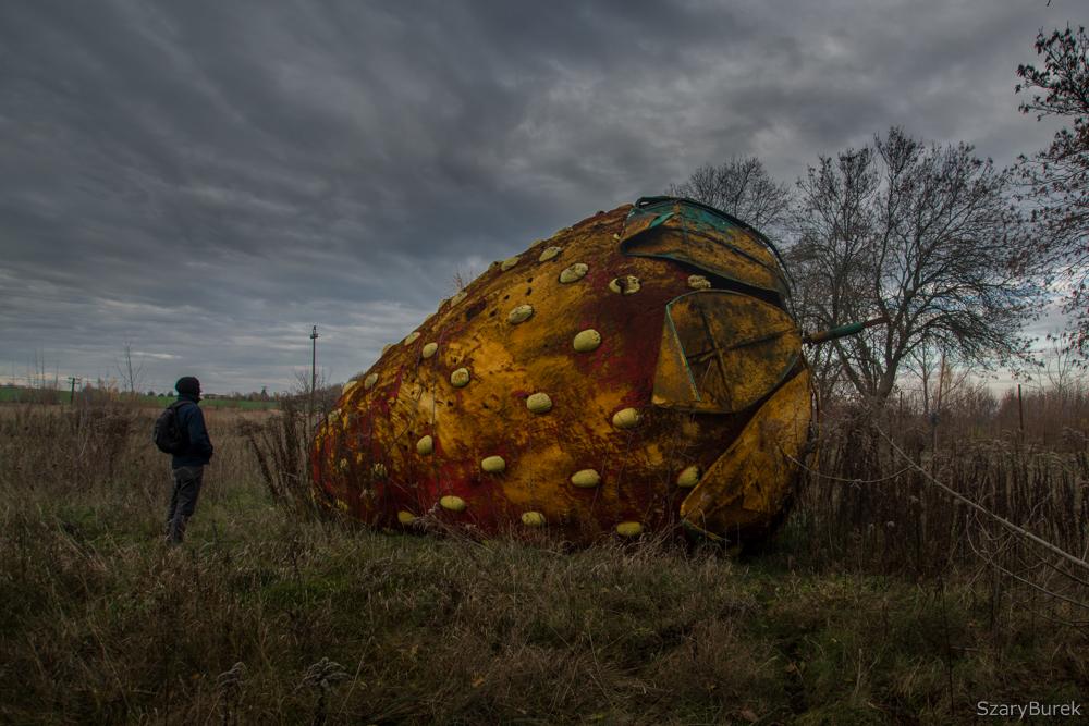Wielka opuszczona… Truskawka