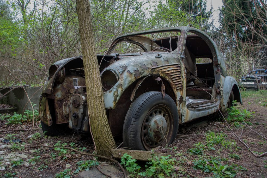 Tajemnicza kolekcja zapomnianych samochodów
